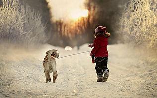 Education canine, Village Canin des Cévennes