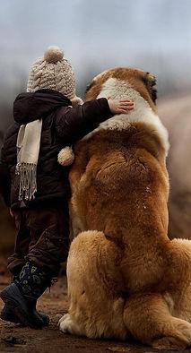 Relation enfant; Village Canin des Cévennes