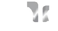 ppg white logo.png