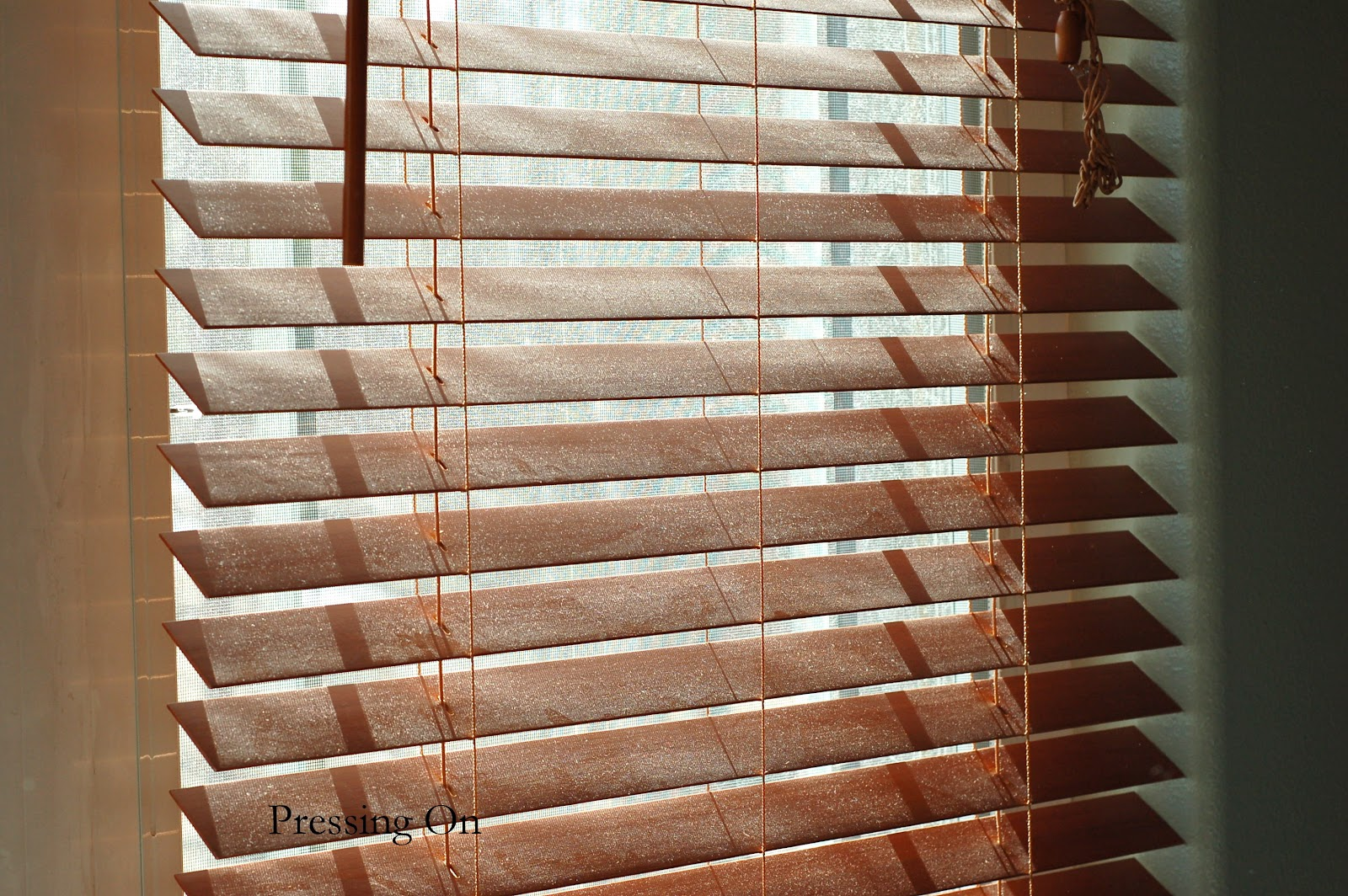 Cleaning Your Blinds Office Boise Commercial Janitorial