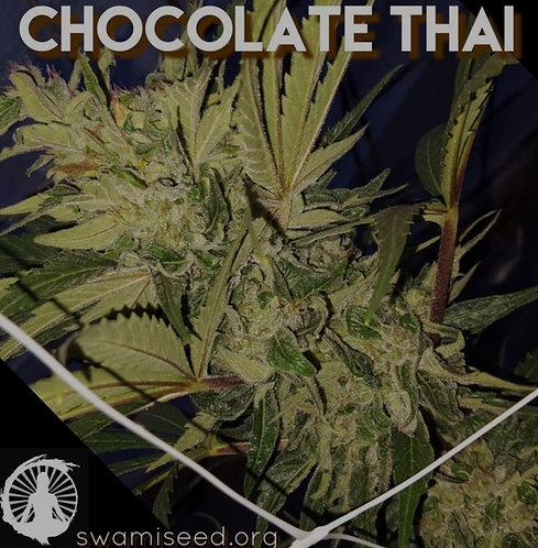Chocolate Thai IBL