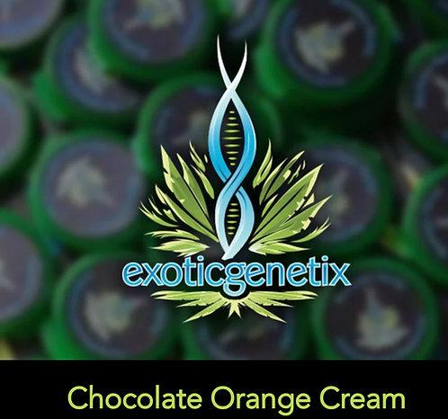 Chocolate Orange Cream