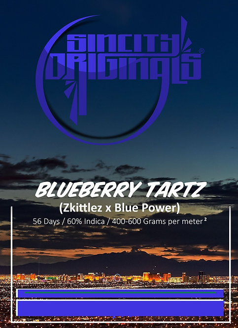 Blueberry TartZ