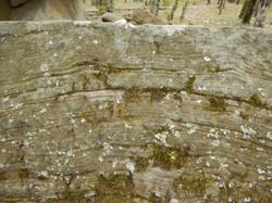 wall stone - closeup