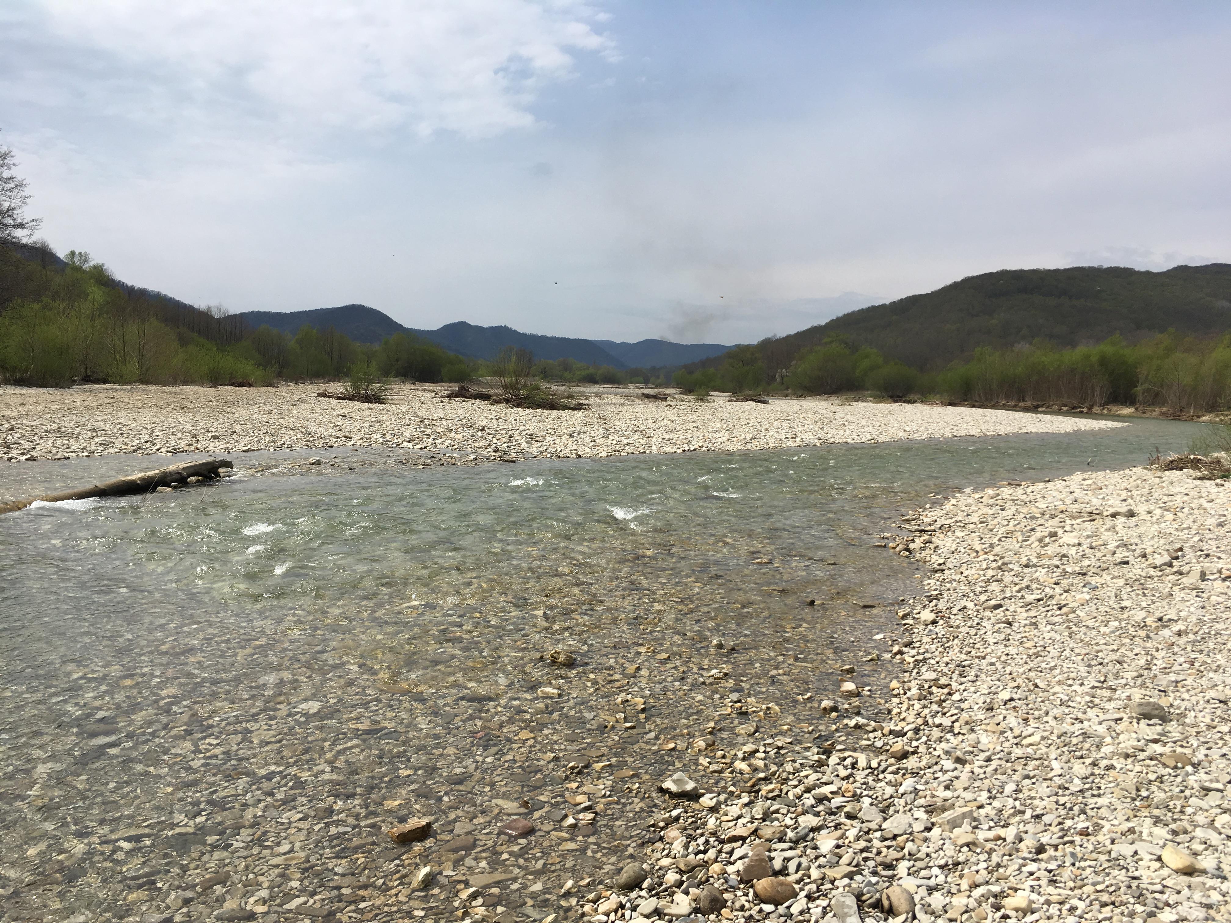 Photo 07-04-2017, 11 15 50