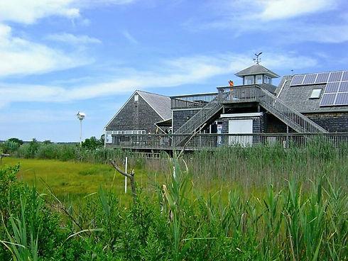 the-wetlands-institute.jpg