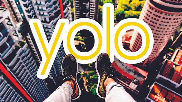 YOLO Series