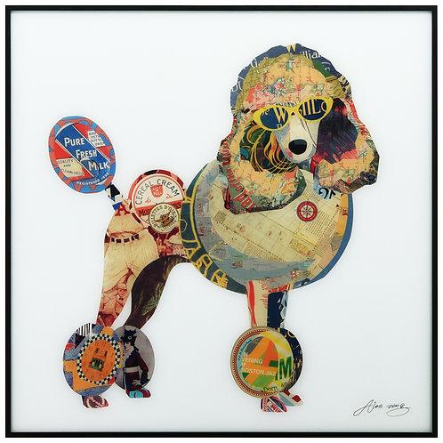 Poodle - AAGB-AZ074-2424