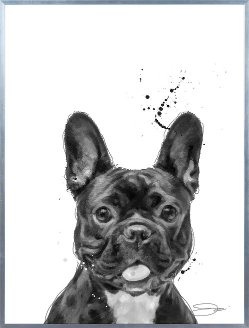 French Bulldog - AAGS-JP1038-2418