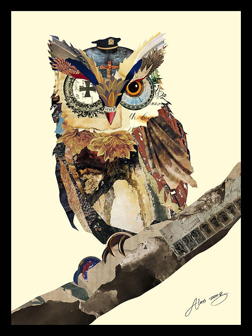 The Wisest Owl - DAC-022
