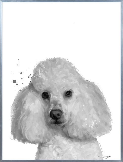 Poodle - AAGS-JP1039-2418