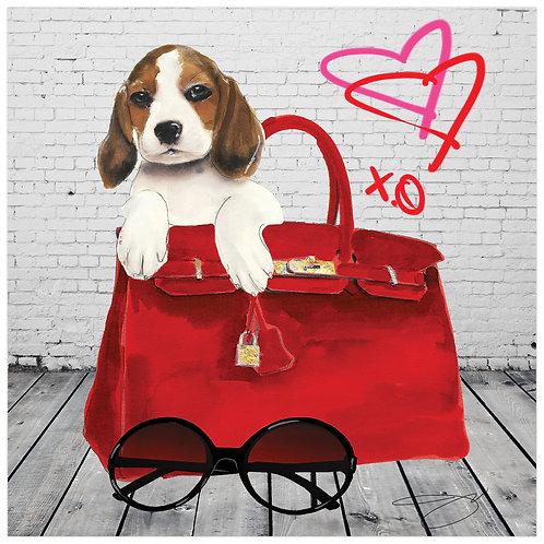 Let's Go! Beagle: TMP-JP1055-2020