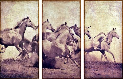 Stampeding Herd - Set of 3 - FRE-EAD1688
