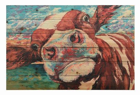 Curious Cow 1- ADL-148530-2436