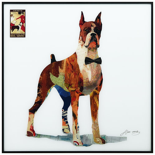The Boxer - AAGB-AZ058-2424