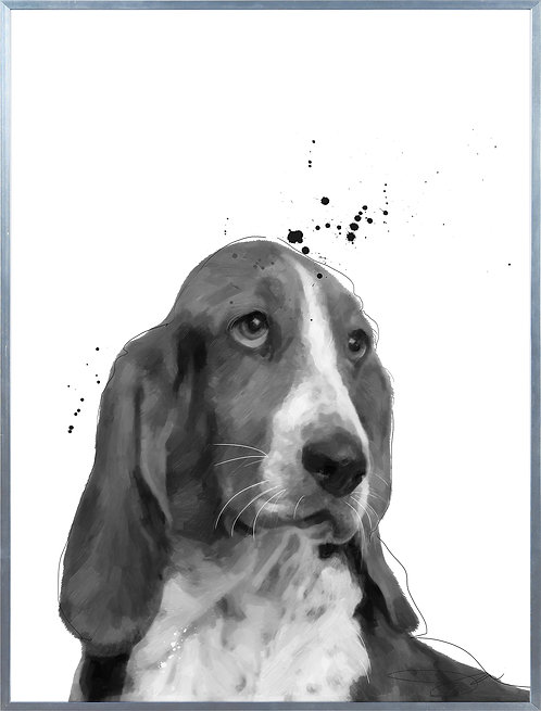 Basset Hound - AAGS-JP1027-2418