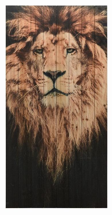 Lion 1- ADL-EAD3782-6030