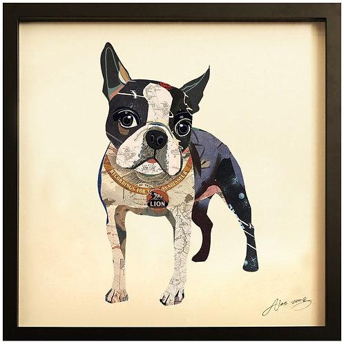 Boston Terrier 2 - DAC-089