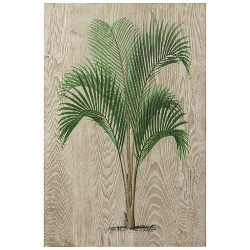 Coastal Palm I: FAL-43926-3624