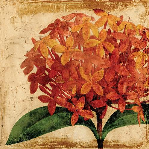 Vibrant Floral 2 - TMP-65393