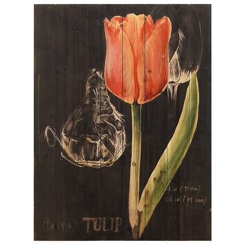 """""""Chalkboard Flower III' - ADL-132362-4030"""