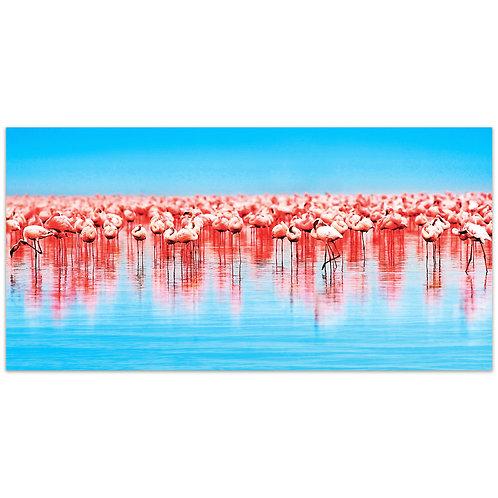 Flamingo Flock: TMP-EAD1997-2448