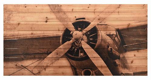 Plane Propeller- ADL-EAD0969-3060