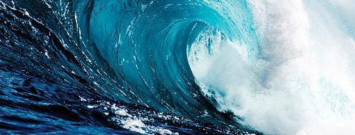 Blue Wave 2 - TMP-EAD5009B-2436