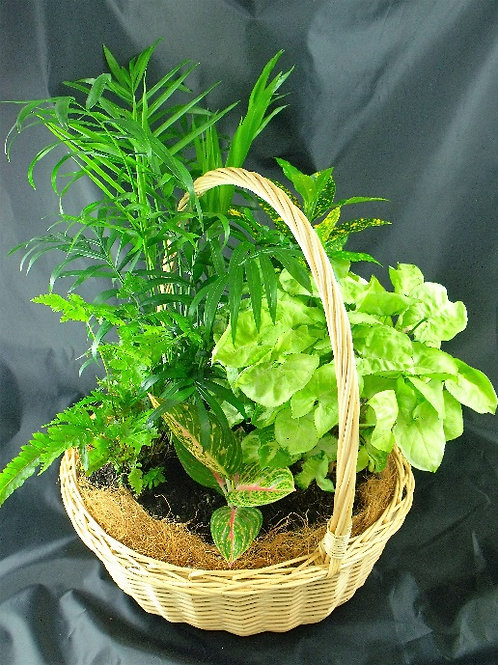 Emerald Garden Basket P001