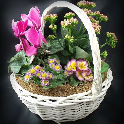 Blooming Garden Basket P002