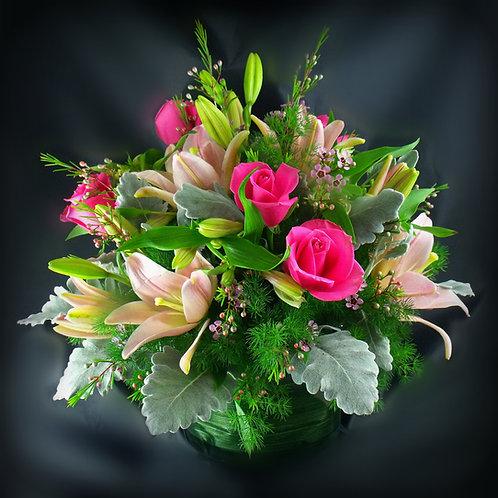 Lily & Rose Celebration A019
