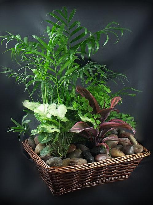 Garden Bliss Basket P003
