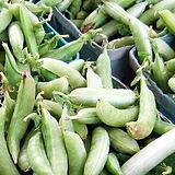 product-peas1.jpg