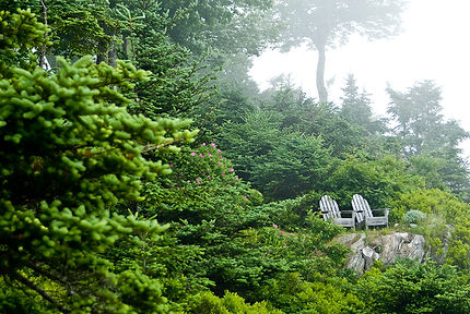 Scenic image of 2 chairs - Oakland Therapist, EMDR Therapist, Women's Issues