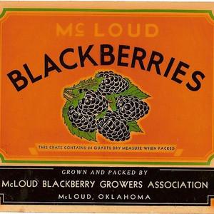 July 9-10th: Blackberry Festival