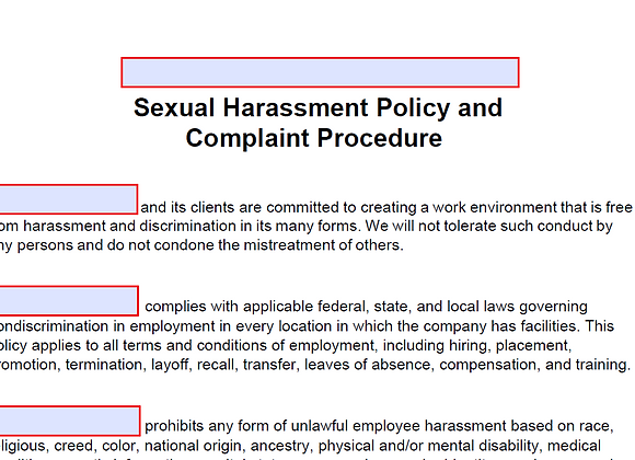 Fillable Anti-Harassment Policy