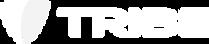 TSM Logo Hor White.png