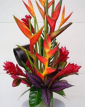 tropical-plant-arangment-tropical-plants