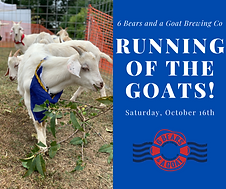 Running of the Goats.png