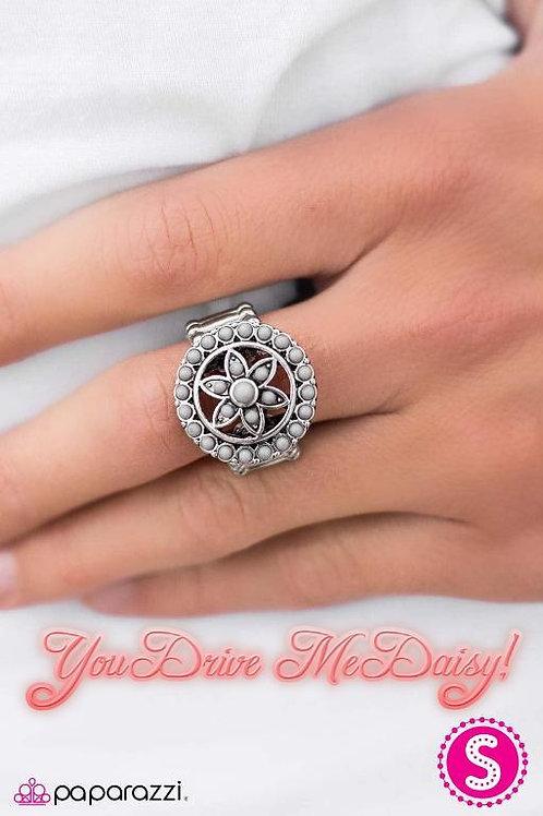 You Drive Me Daisy