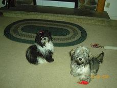 Sierra and Tucker.jpg
