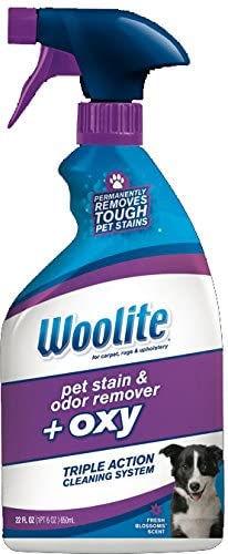 Woolite.jpg