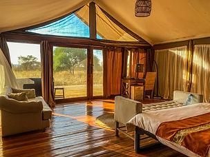 Tarangine Ndovu Tented Lodge