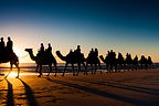 Cable Beach camel ride