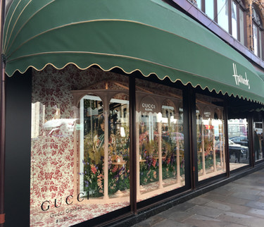 Gucci Harrods Window Displays