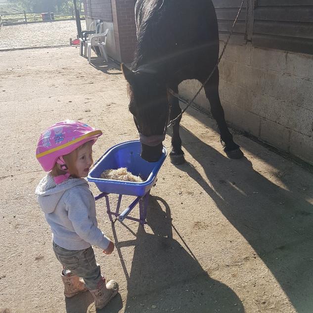 Aoife & Argy Pony