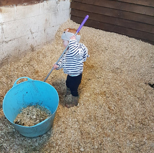 Aoife cleaning Bubbles stable