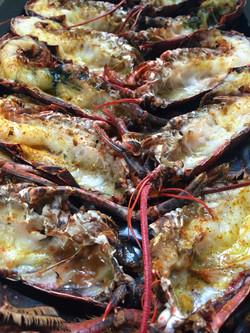 Grilled lobster copy