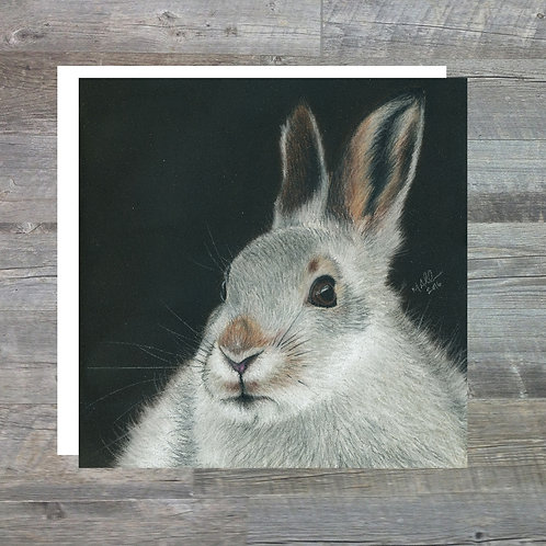 Monadliath Mountain Hare - Greetings Card (15x15cm)