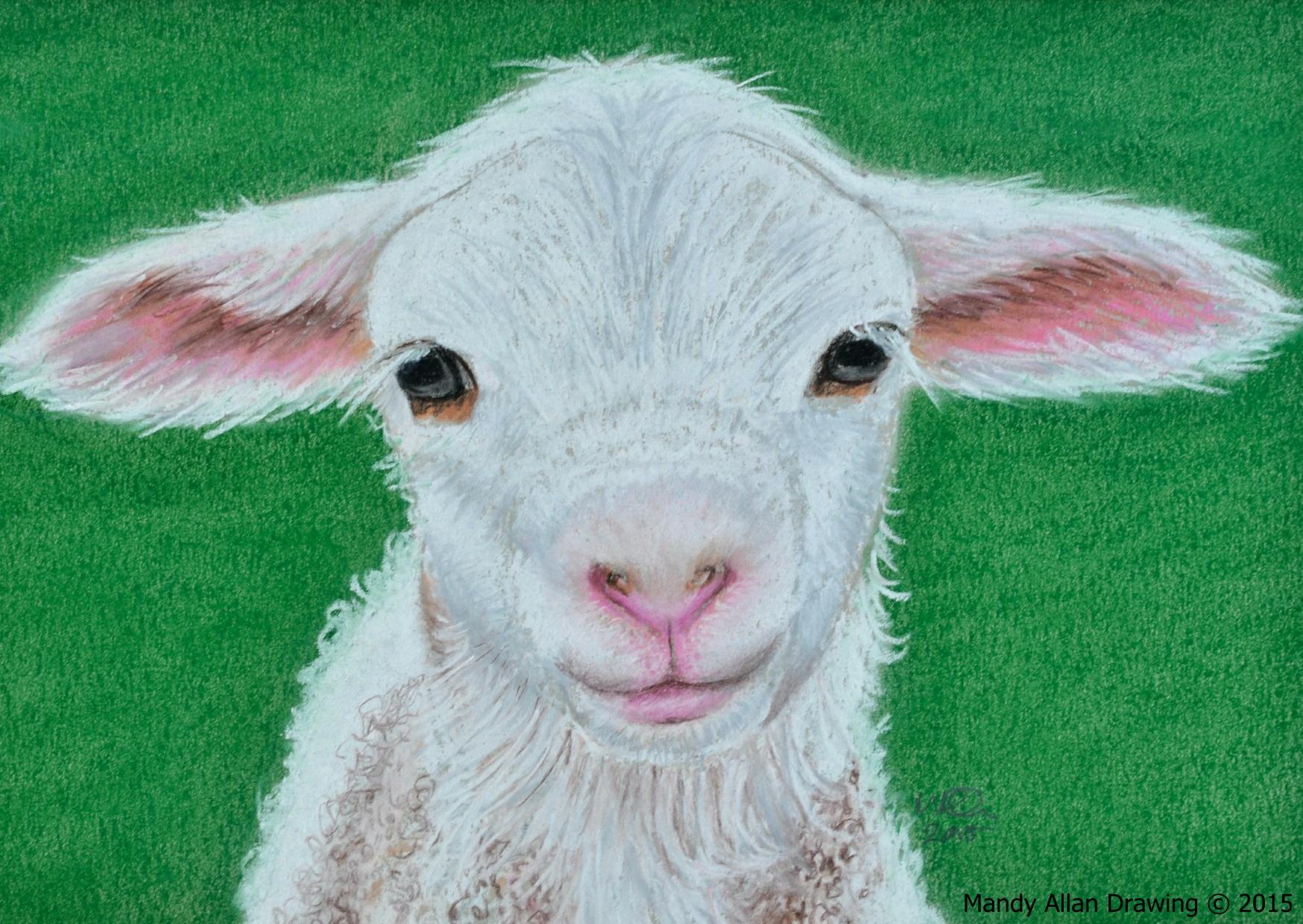 """""""Lamb"""""""